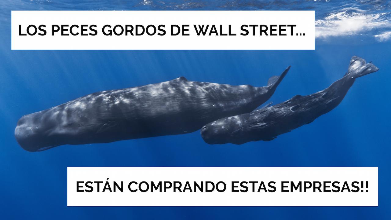 Los Peces Gordos De Wall Street Están Comprando Estas Empresas!!
